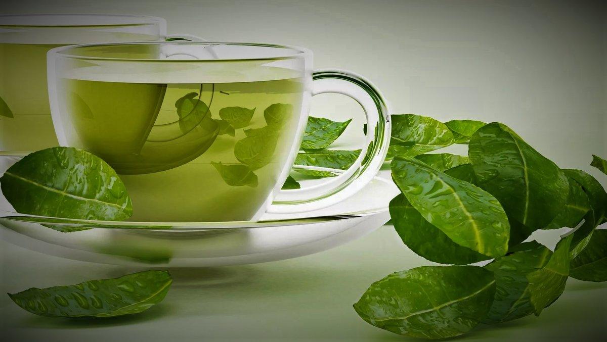 Белый чай или зеленый: какой лучше для здоровья?